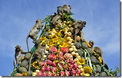 Monkey_Buffet_Festival_food_pyramid